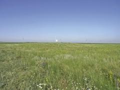 Курган 1. Вид с северо-востока.