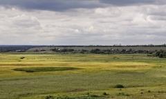 Общий вид с юго-юго-востока на мысовой выступ правого берега р. Чигла в месте расположения курганов.
