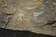 Антропоморфная фигура с грибообразным завершением и другие петроглифы.