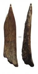 Изделия из кости: шило, длина 7 см.