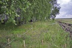 Общий вид поселения. Разметка раскопа над западиной жилища 5. Фото с северо-запада.