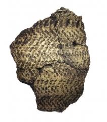 Находки с поселения: фрагмент глиняного сосуда.