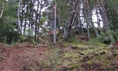 Русенихинский могильник. Вид с северо-северо-востока.