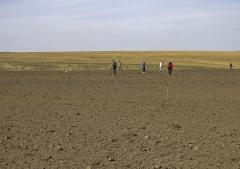 Обследование поверхности селища.