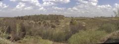 Тимеревский археологический комплекс. Вид с юга.